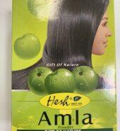 Hesh Amla 100 Gm