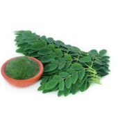 Drumstick Leaves 0.25lb