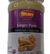Shan Ginger Paste 310Gm